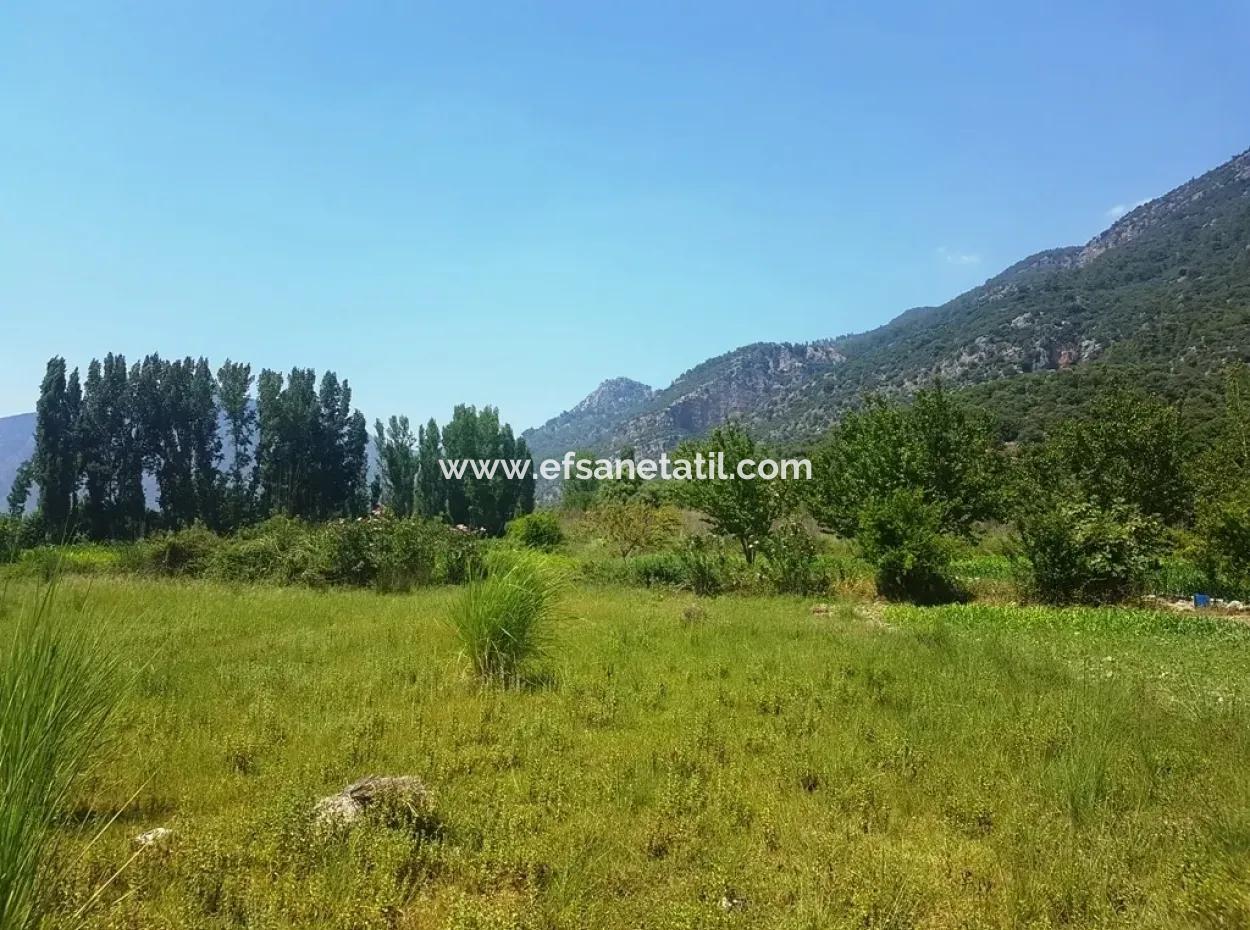 Köyceğizde Satılık Arazi 3700 M2