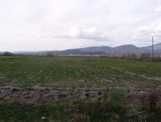 Ortaca Eskiköyde Satılık Verimli Boş Arazi