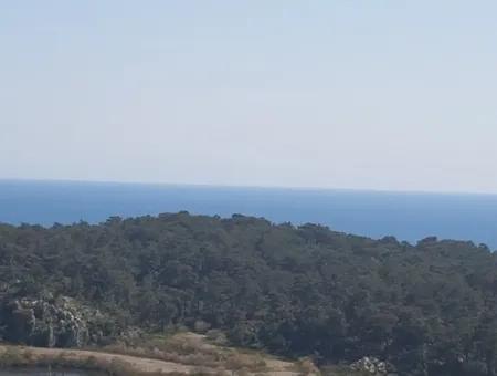 Ortaca Sarıgermede Satılık Kelepir Deniz Manzaralı Arsa