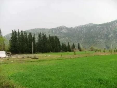Okçularda Satılık Yatırıma Uygun Verimli Arazi
