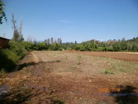 Beyobasında Satılık Kelepir Verimli Arazi